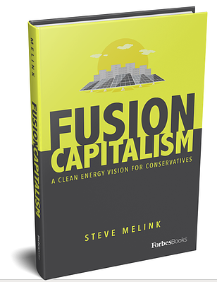 Fusion Capitalism Book Cover