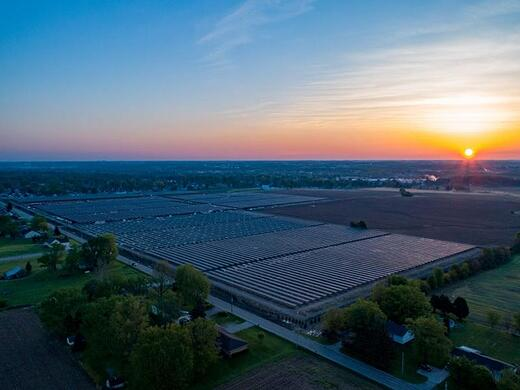 Sunset at Melink Solar project